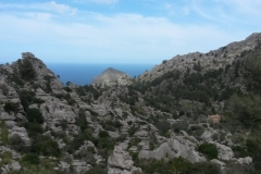 2016-03-06-Mallorca-Trainingslager